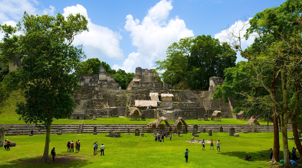 Tikal featuring a ruin and heritage elements