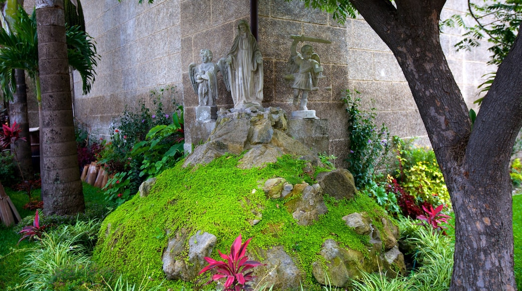 Church of Saint Francis which includes a garden