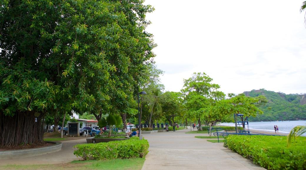 Coco Beach which includes a park