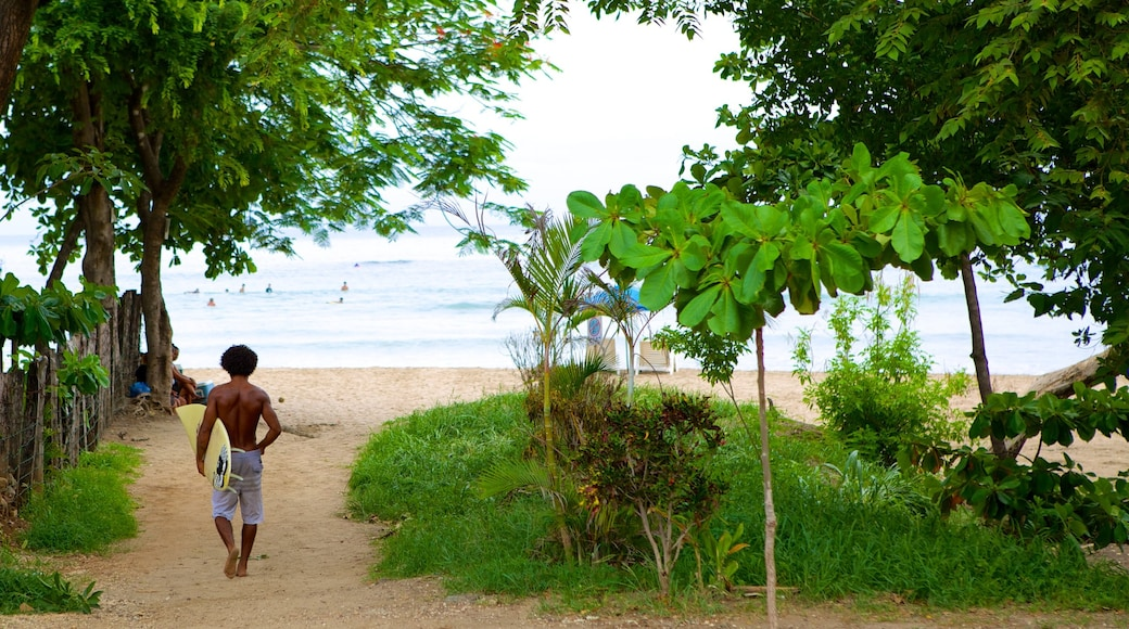 Tamarindo showing a sandy beach as well as an individual male
