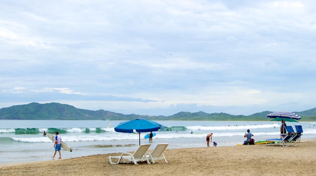 Tamarindo featuring a beach