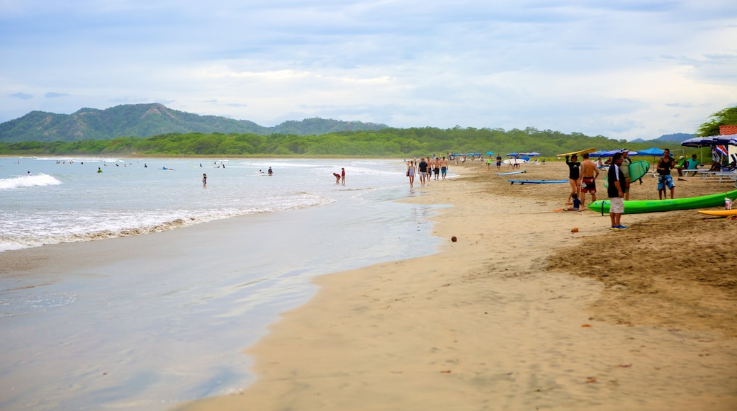 Tamarindo showing a sandy beach as well as a large group of people