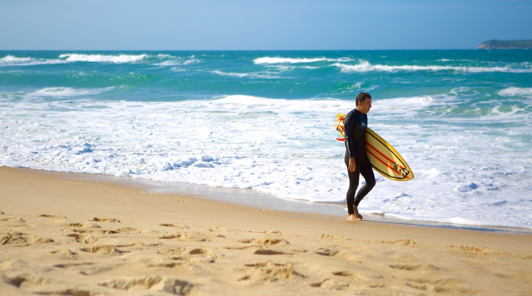 Mole Beach which includes a sandy beach and surfing as well as an individual male