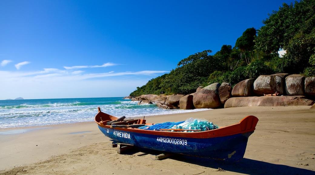 Barra da Lagoa Beach showing landscape views, boating and a beach