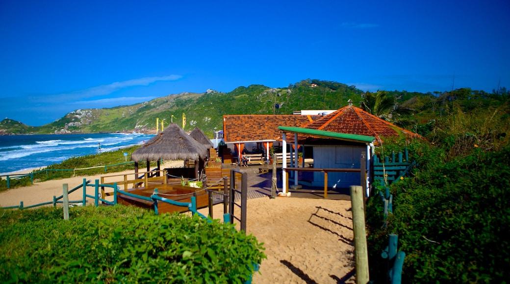 Mole Beach which includes general coastal views