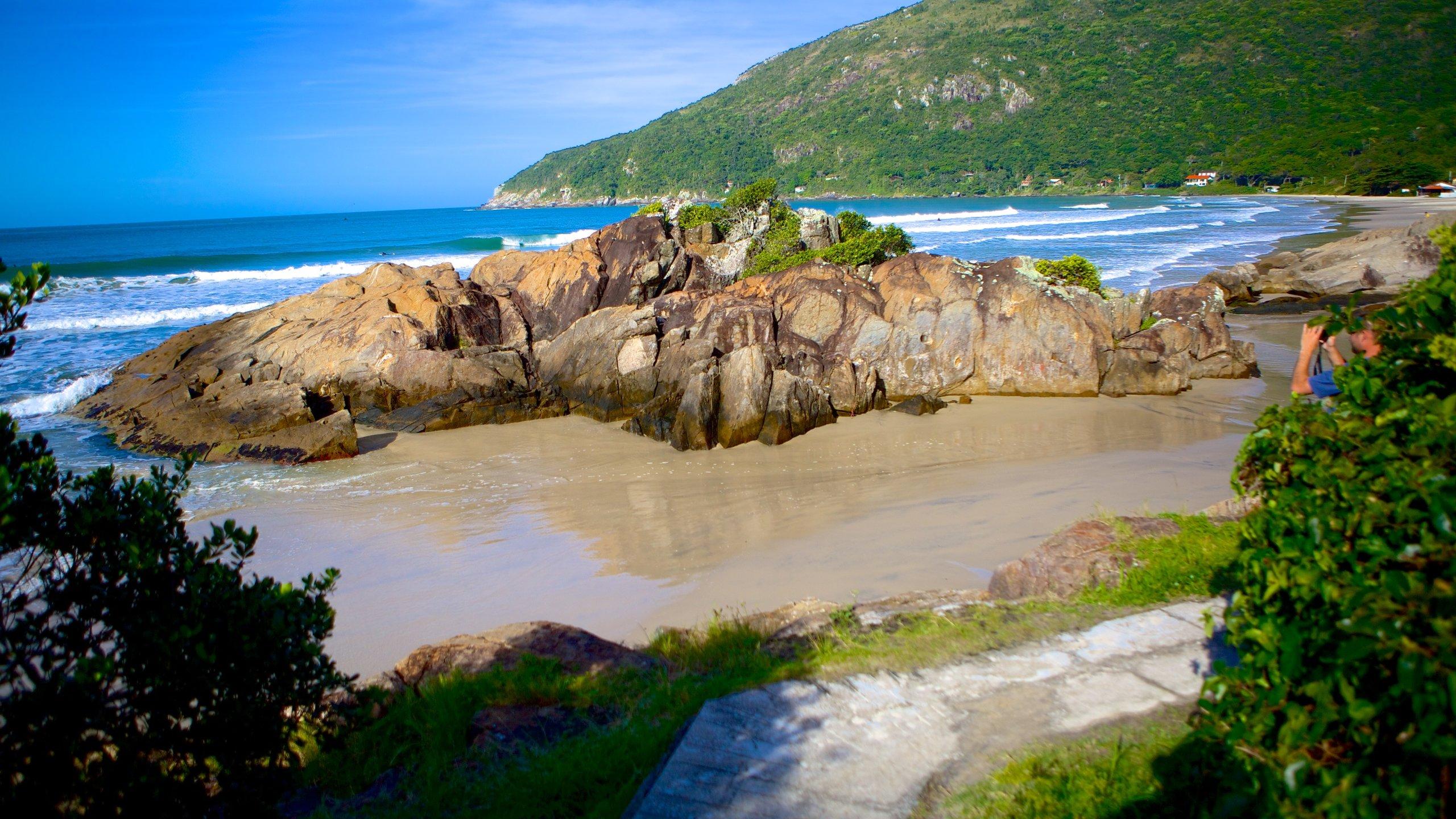 Santa Catarina Island, Santa Catarina State, Brazil