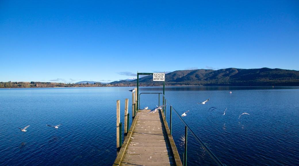 Te Anau featuring a lake or waterhole