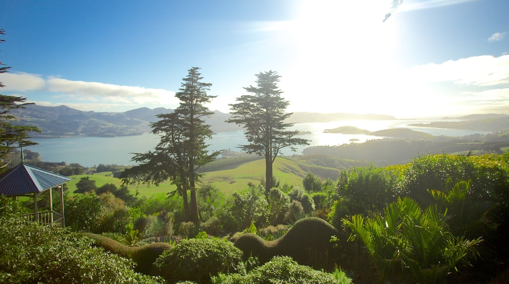 Larnach Castle showing forest scenes and landscape views