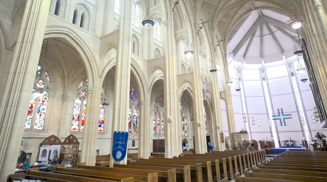 St. Paul\'s Cathedral which includes a church or cathedral, interior views and religious elements