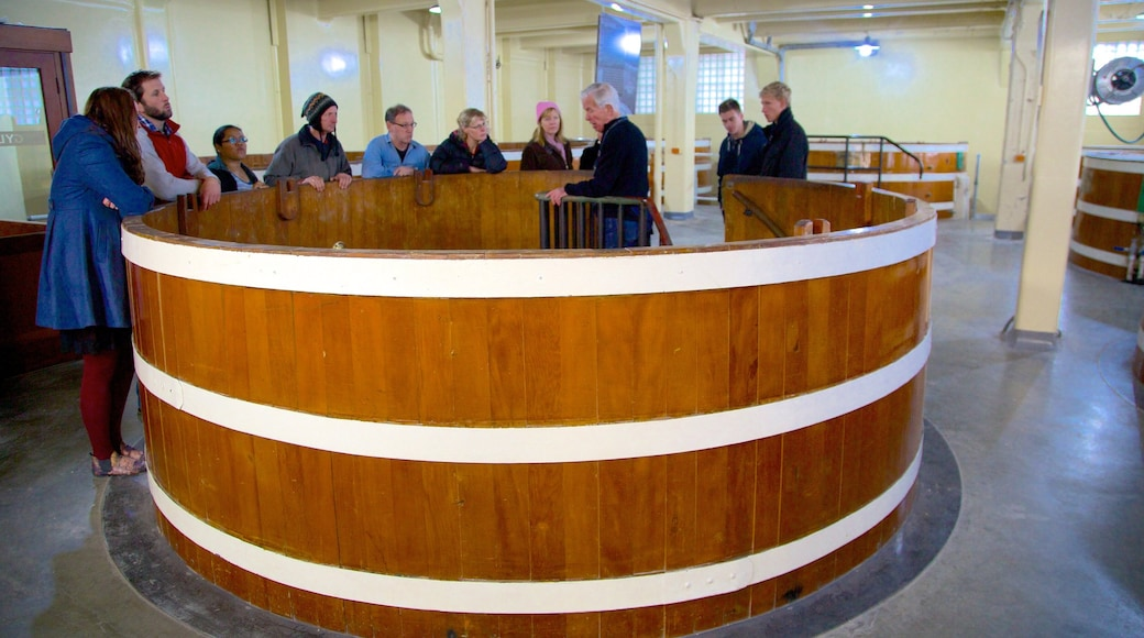 Speight\'s Brewery which includes interior views as well as a large group of people