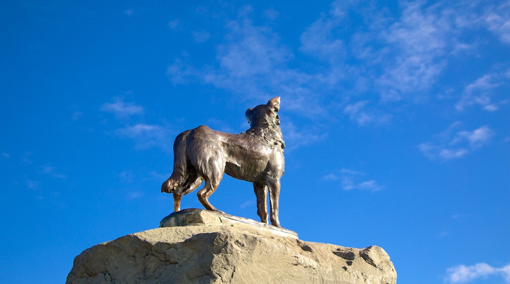 Sheepdog Statue showing a statue or sculpture and outdoor art