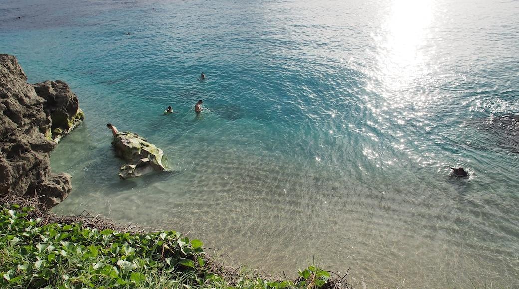 사이판 을 보여주는 일반 해안 전경
