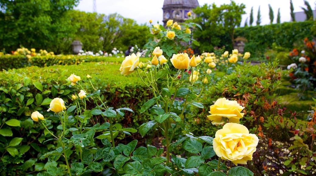 Palácio dos Biscainhos caracterizando um parque e flores