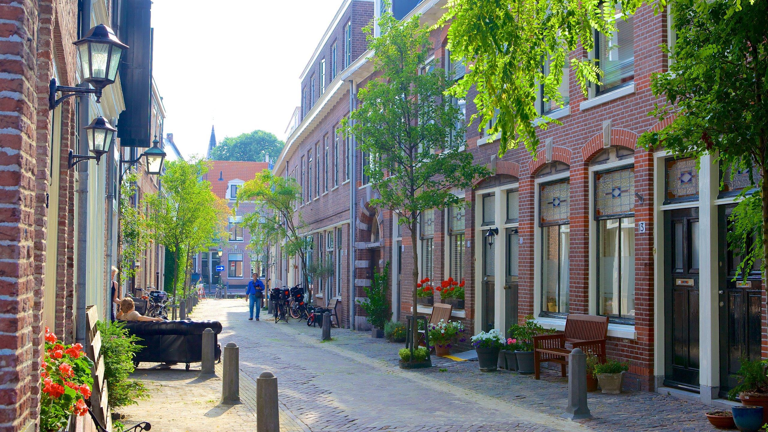 Oude Stad, Haarlem, North Holland, Netherlands