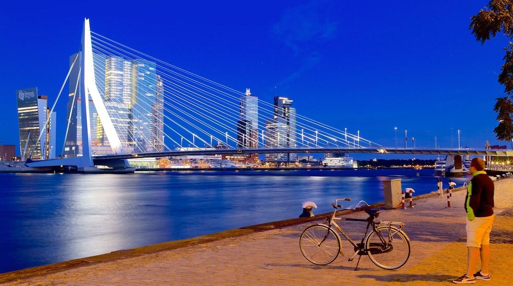 Erasmusbrücke das einen bei Nacht, Fahrradfahren und Brücke