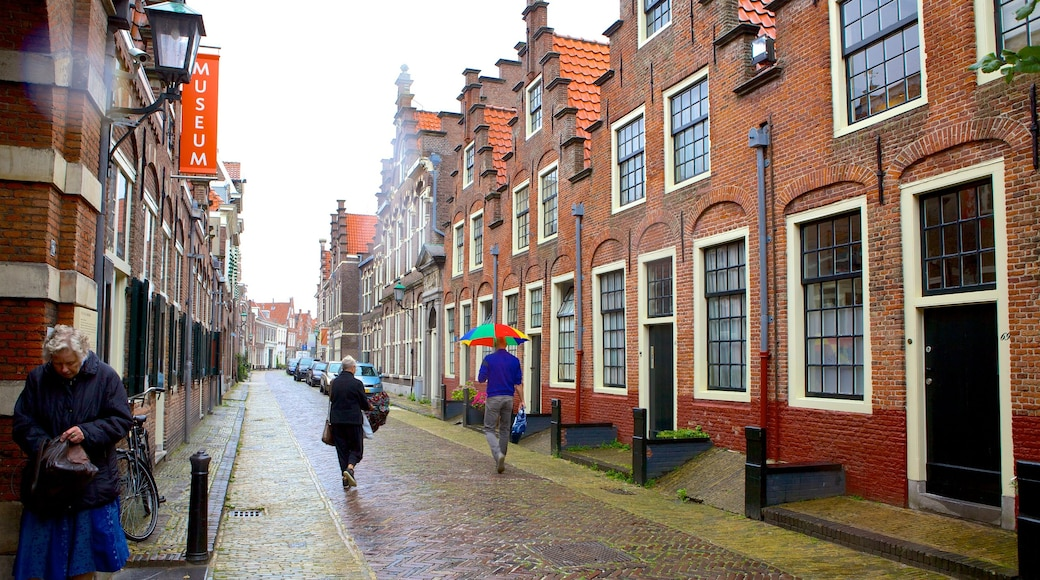 Frans Hals Museum showing a house and street scenes as well as a small group of people