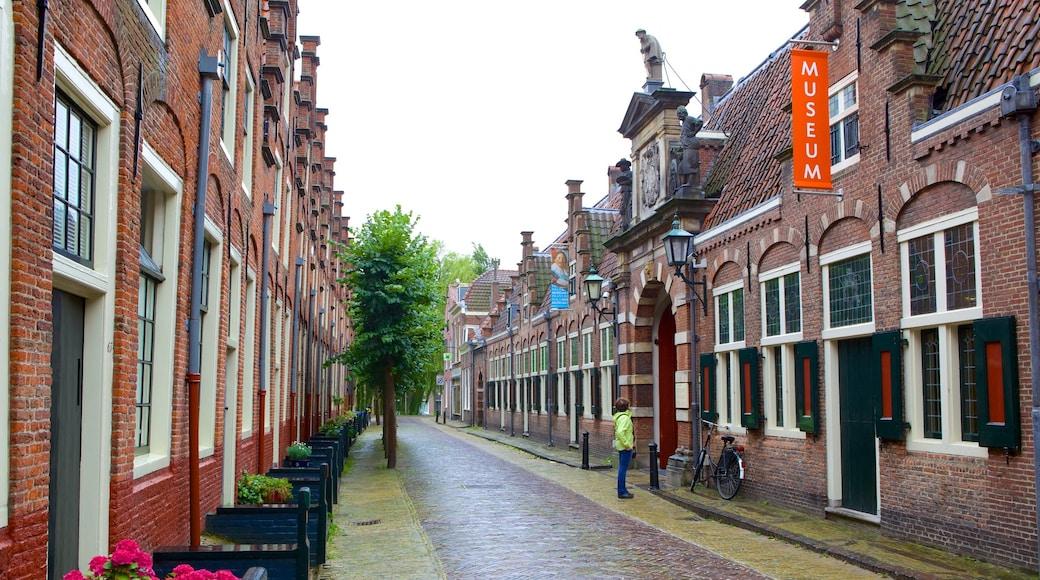 Frans Hals Museum showing street scenes