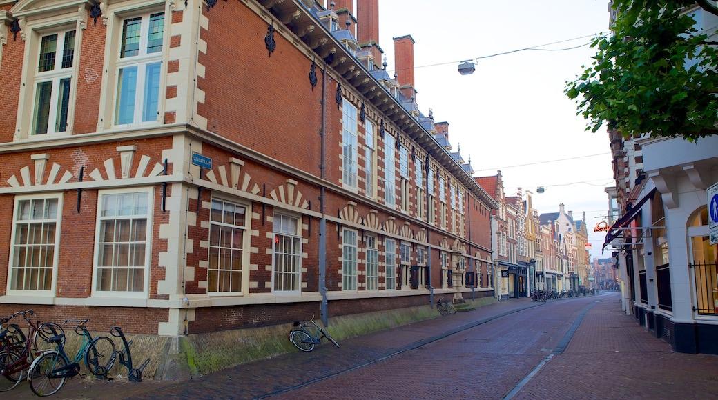Stadhuis featuring street scenes