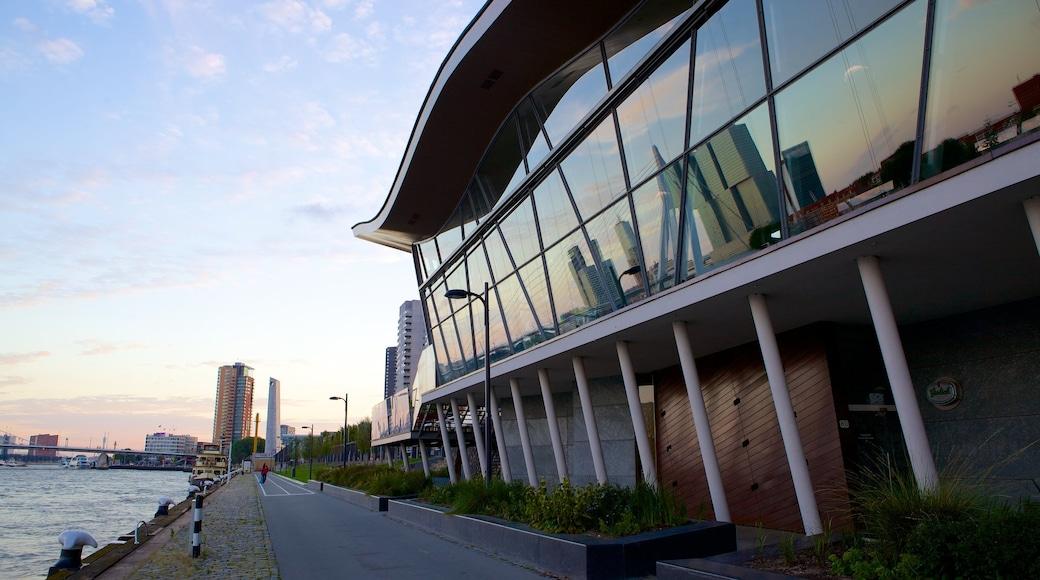 Erasmusbrücke das einen moderne Architektur und allgemeine Küstenansicht