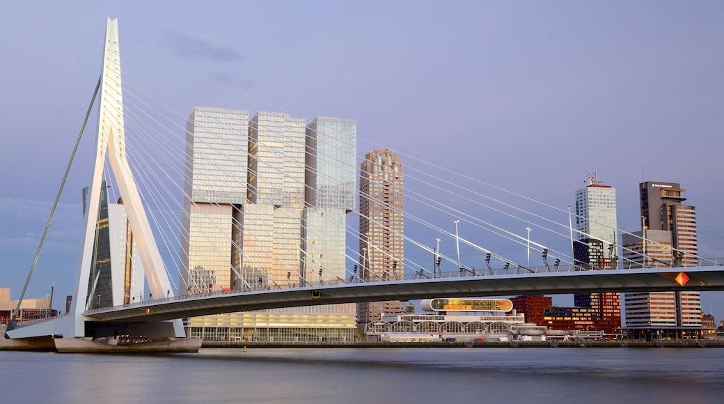 Erasmusbrücke das einen Skyline, moderne Architektur und Stadt