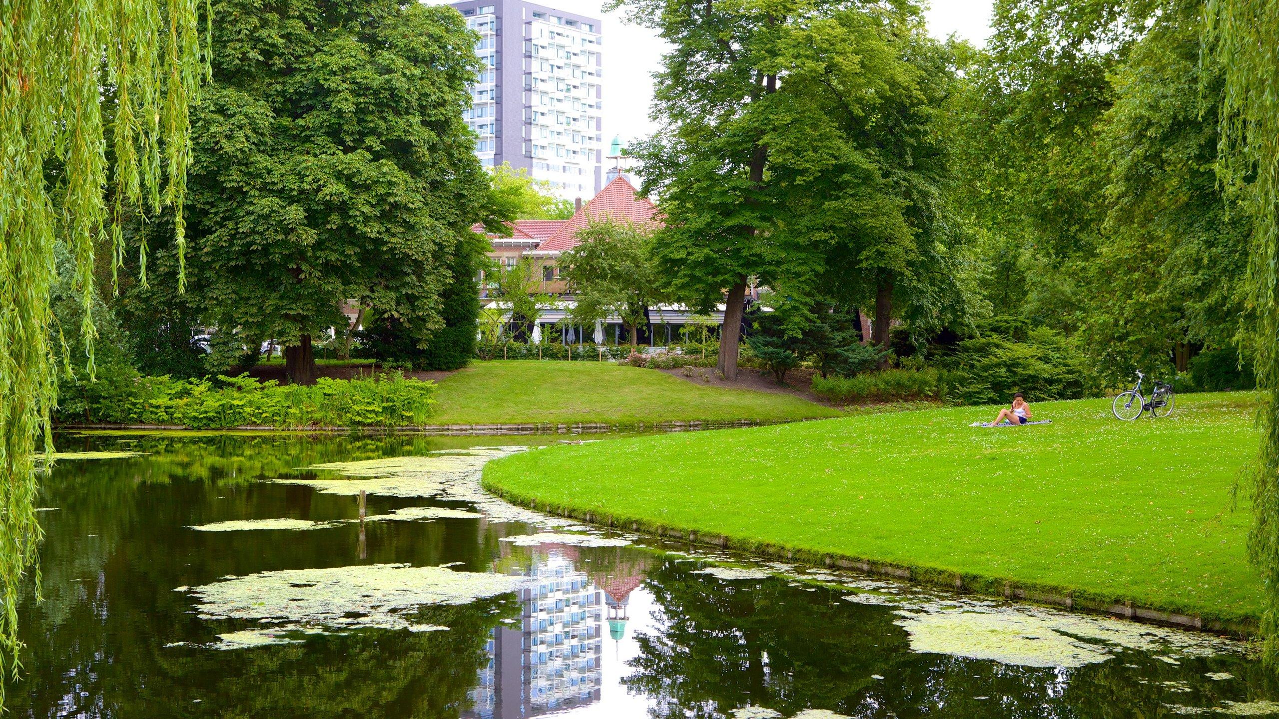 Centrum, Rotterdam, South Holland, Netherlands