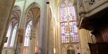 Dom Church featuring interior views, a church or cathedral and religious elements