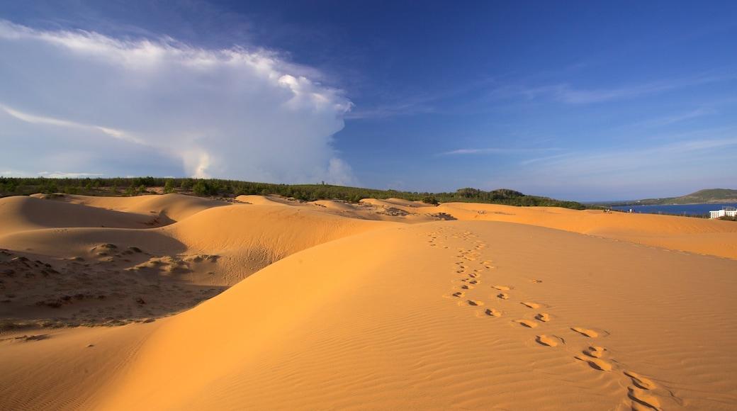 Sanddünen von Mũi Né das einen Wüstenblick und Landschaften