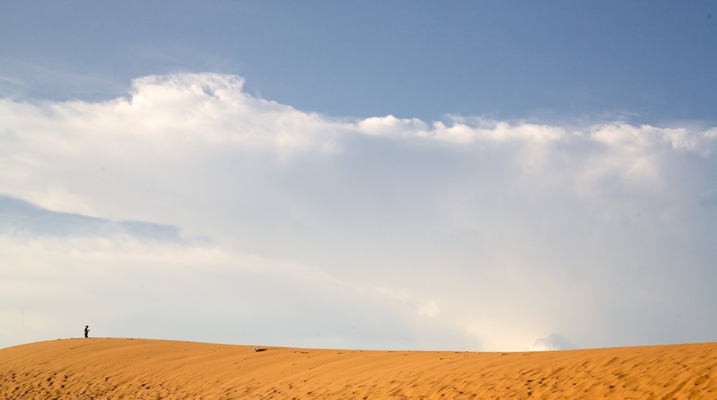 Mui Ne Sand Dunes which includes desert views