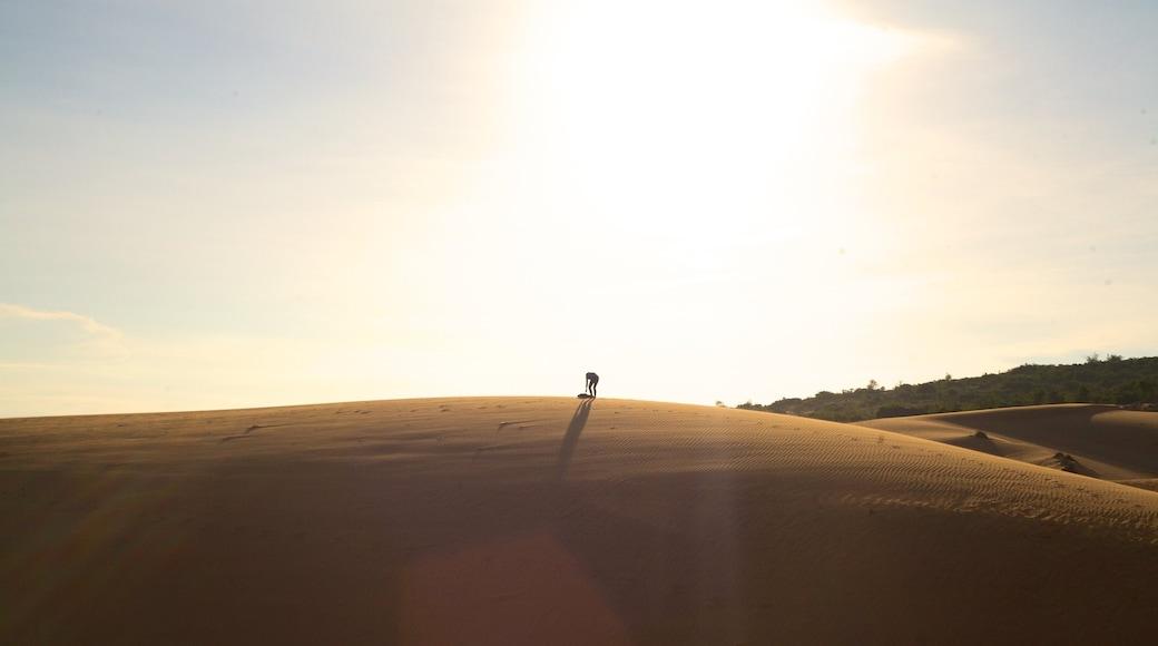 Mui Ne Sand Dunes featuring desert views and landscape views