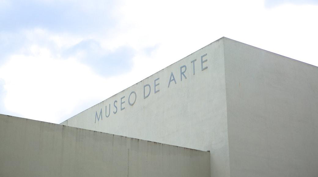 พิพิธภัณฑ์ศิลปะเอลซัลวาดอร์ แสดง ป้าย