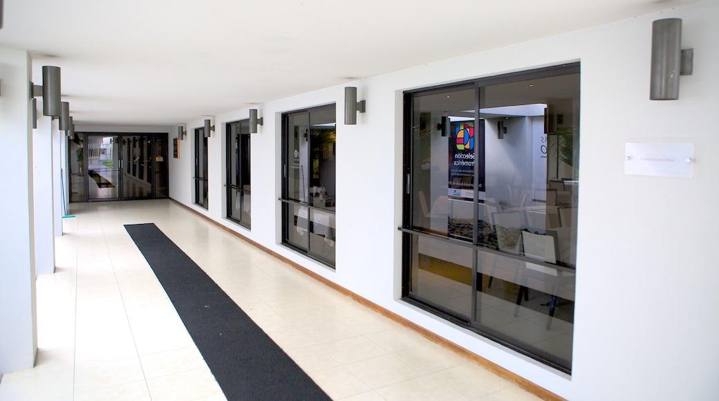 พิพิธภัณฑ์ศิลปะเอลซัลวาดอร์ ซึ่งรวมถึง การตกแต่งภายใน