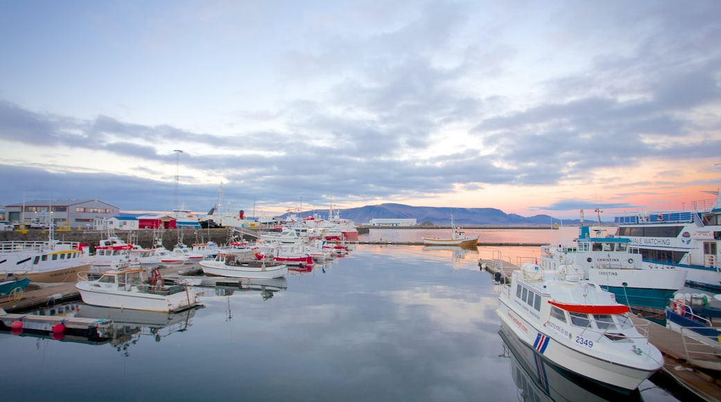 Reykjavik Harbour showing a bay or harbour, boating and general coastal views