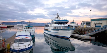 Reykjavik Harbour showing general coastal views, a sunset and a bay or harbor