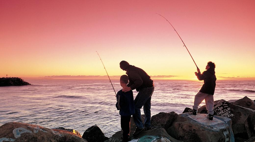 Port Macquarie featuring rugged coastline, fishing and general coastal views
