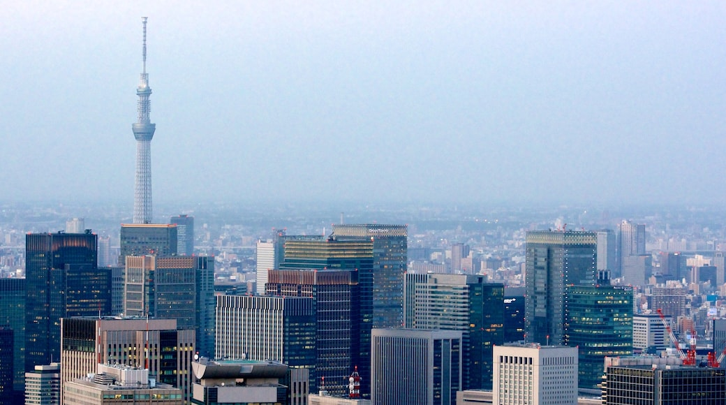 Tokyo Sky Tree showing landscape views and cbd
