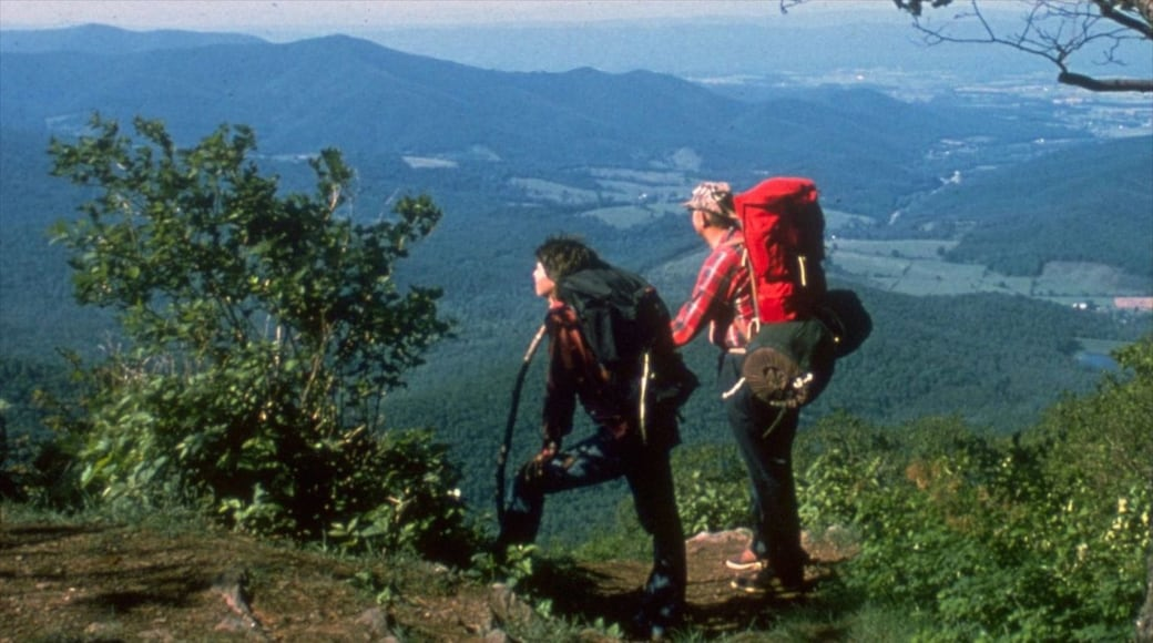 Luray featuring hiking or walking and mountains as well as a small group of people