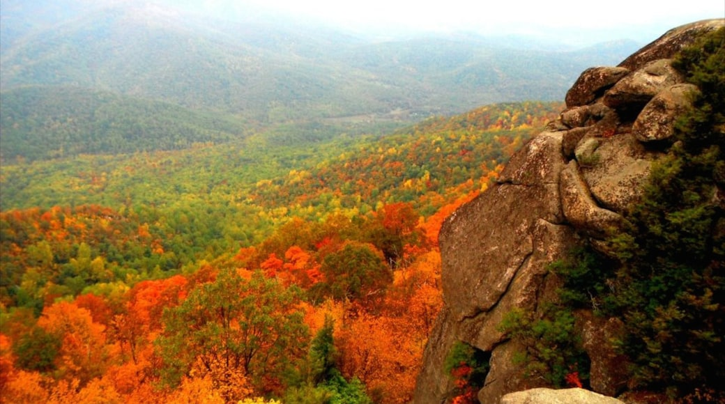 Luray showing landscape views and autumn leaves