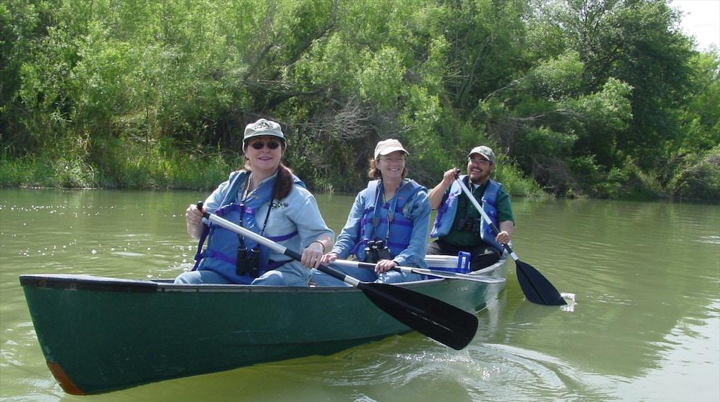 McAllen mostrando vistas de paisajes, kayak o canoa y un río o arroyo