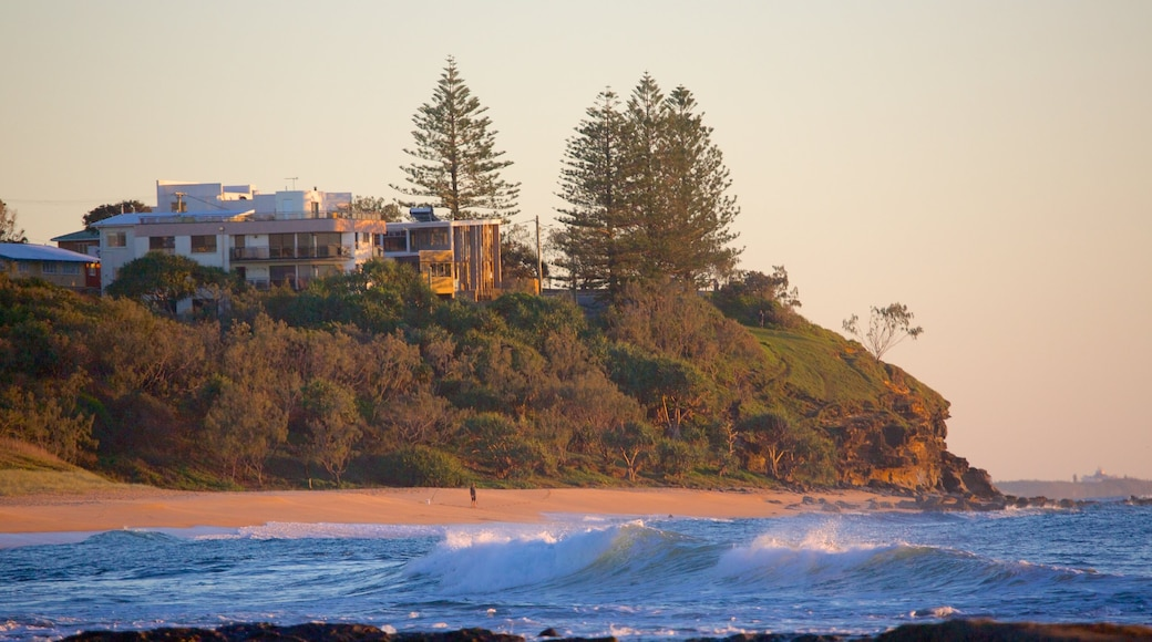 Shelly Beach which includes general coastal views