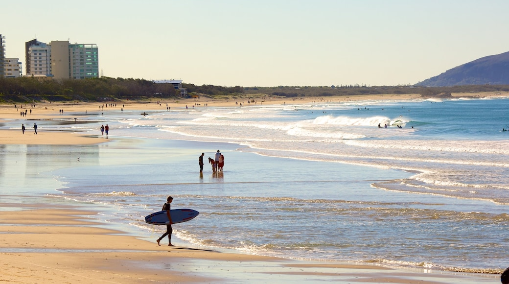 Alex Beach showing surfing and a sandy beach as well as a large group of people