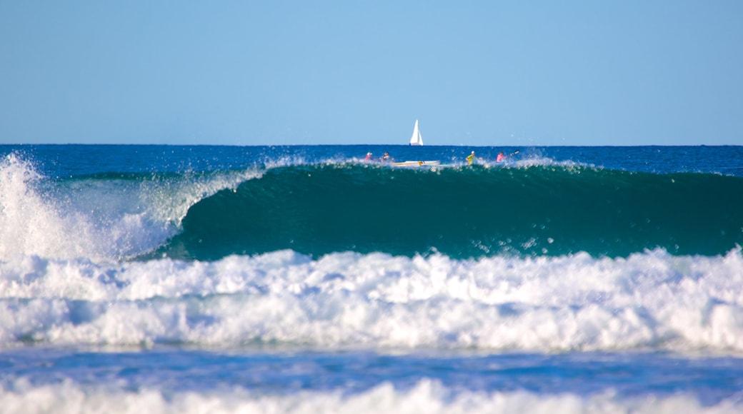 Alex Beach which includes surf