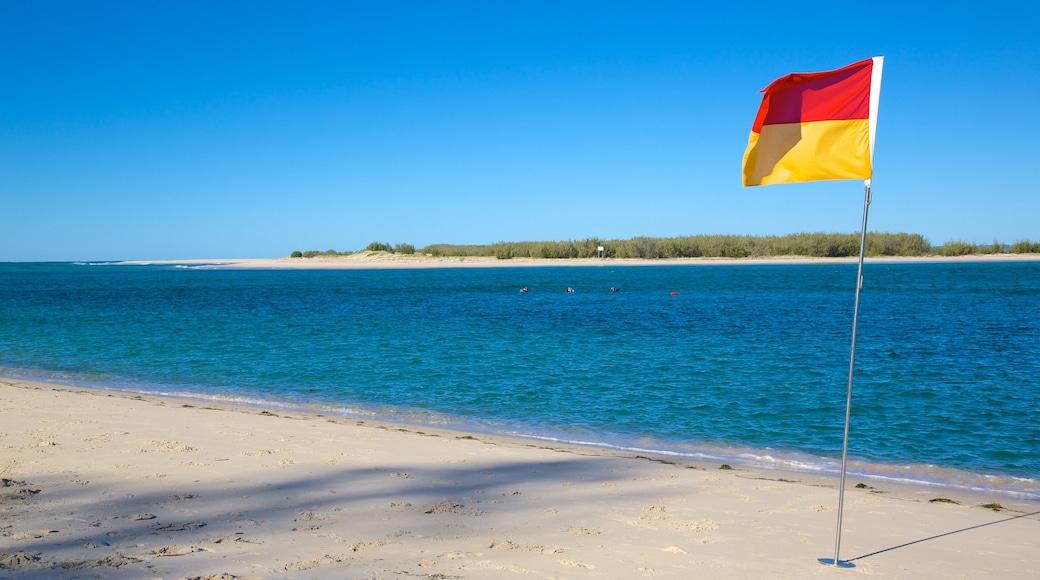 Bulcock Beach showing a sandy beach
