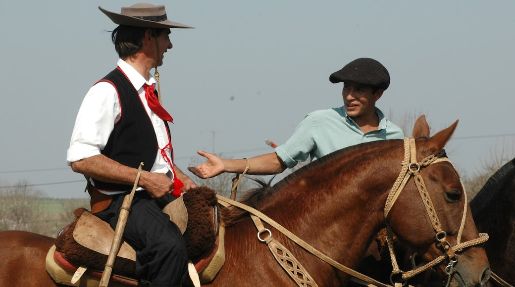 Entre Rios showing land animals and horseriding as well as a small group of people