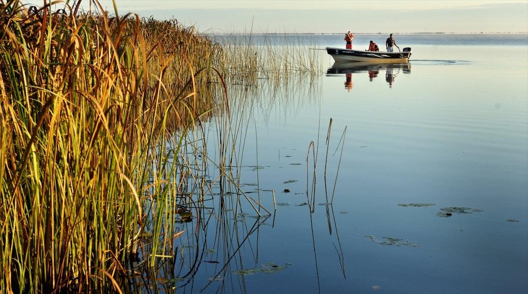 Corrientes mostrando paisagem, canoagem e pântano