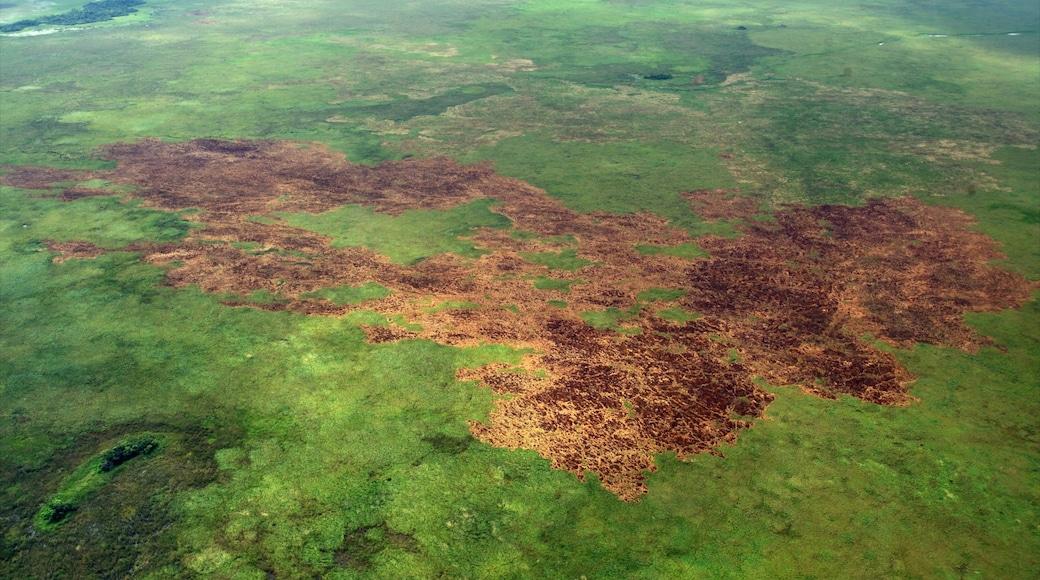 Corrientes caracterizando paisagem