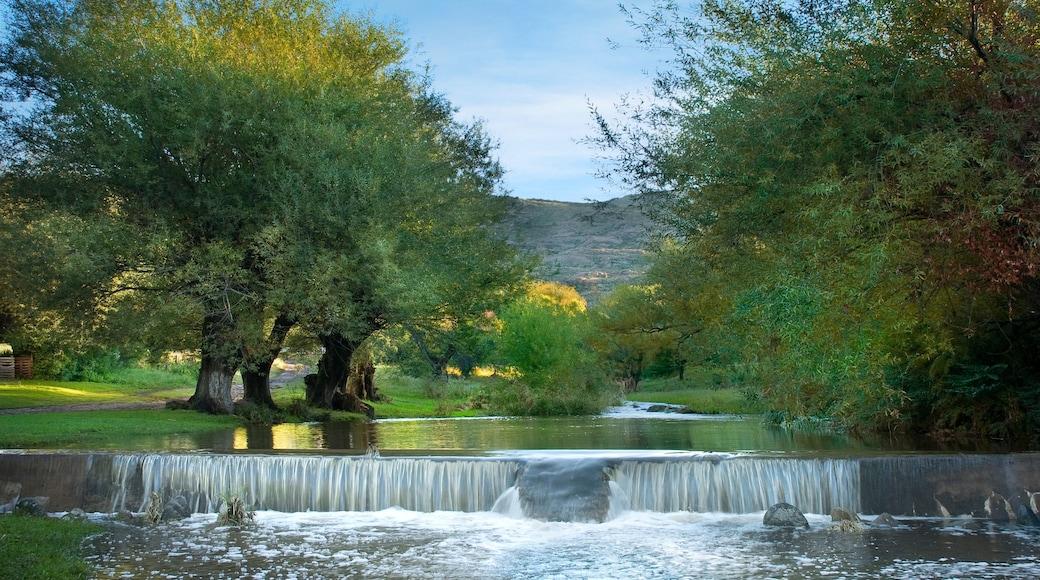 Cordoba mostrando um rio ou córrego