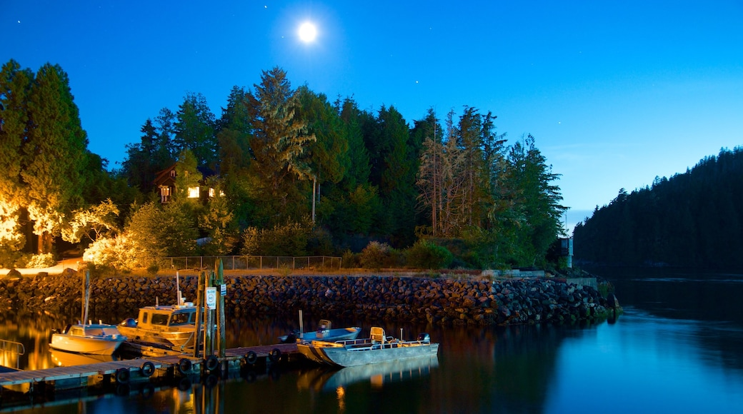 Tofino featuring general coastal views, night scenes and a bay or harbour