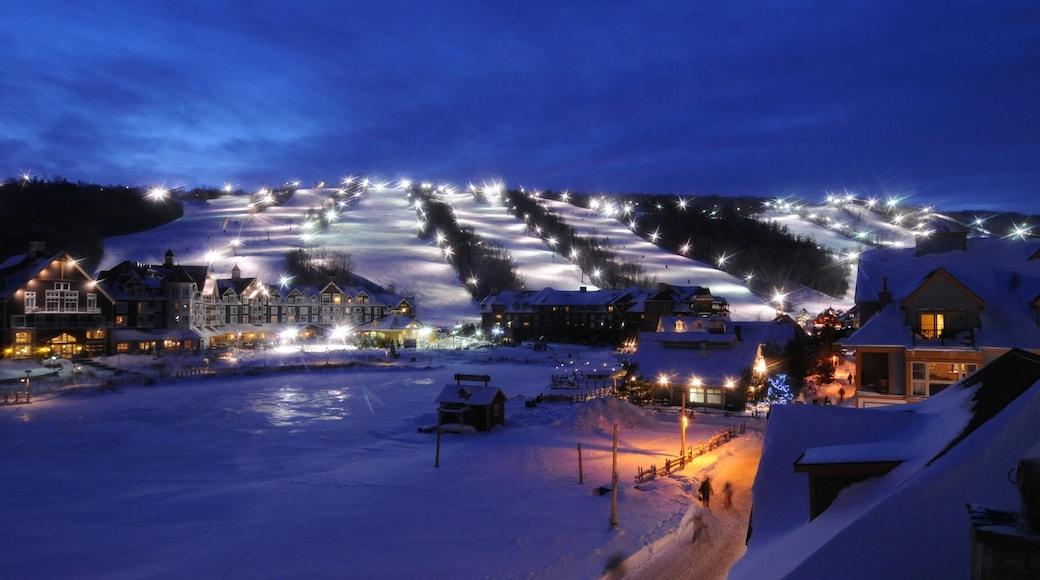 Blue Mountain Ski Resort que incluye escenas nocturnas, nieve y una pequeña ciudad o pueblo