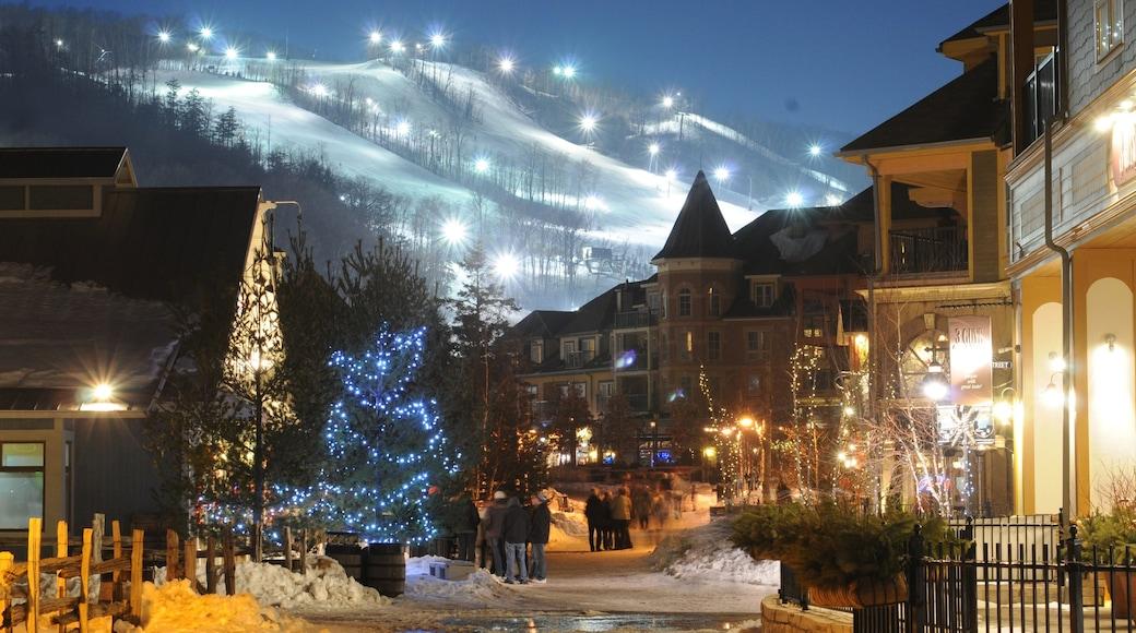 Blue Mountain Ski Resort ofreciendo escenas urbanas, una pequeña ciudad o pueblo y nieve