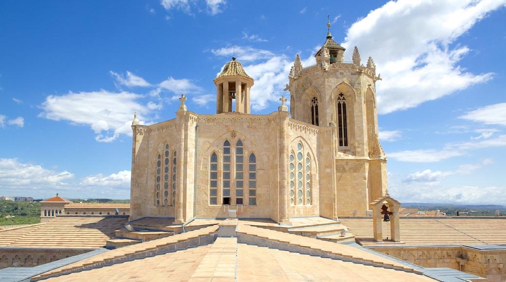 Kathedrale von Tarragona welches beinhaltet Kirche oder Kathedrale, historische Architektur und religiöse Aspekte